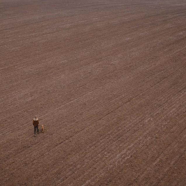 Field woman dog