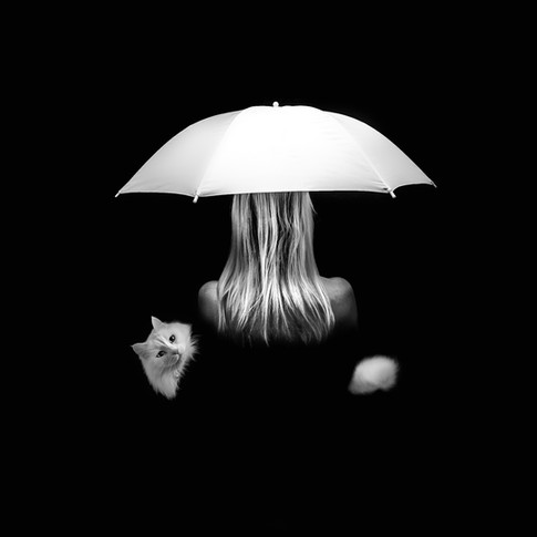 blond woman white umbrella white cat on black background