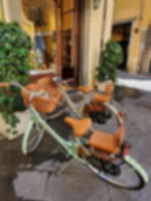 Lucca Saddle Bikes.jpg