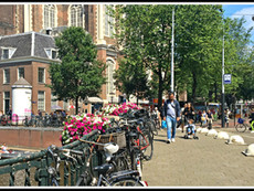 Hallelujah Amsterdam