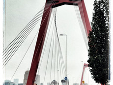 Rotterdam, from the past to the present.