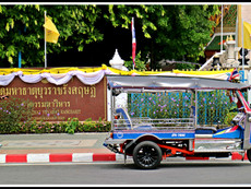 Wat Mahathat and Surrounding Area