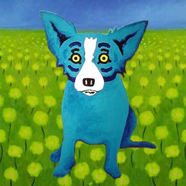 Blue Dog in Field
