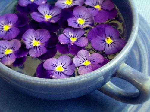 Fondant violette