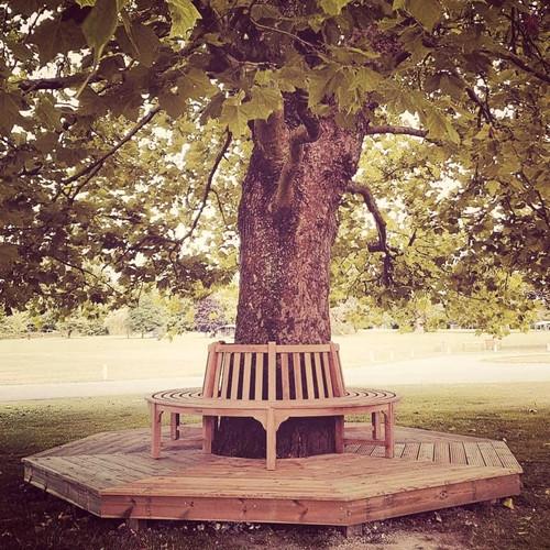 Circular bench