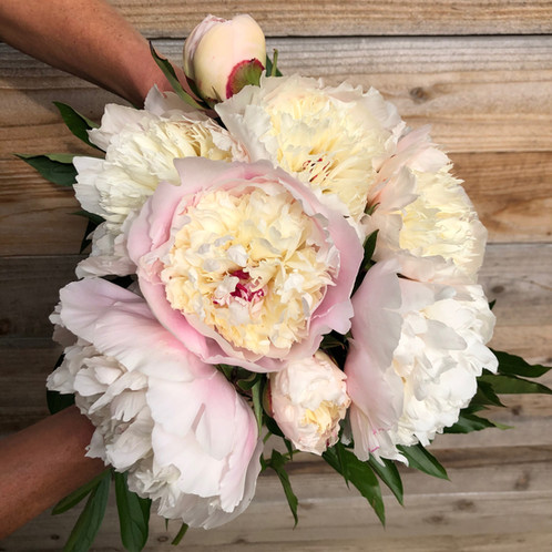 Immaculee Bouquet