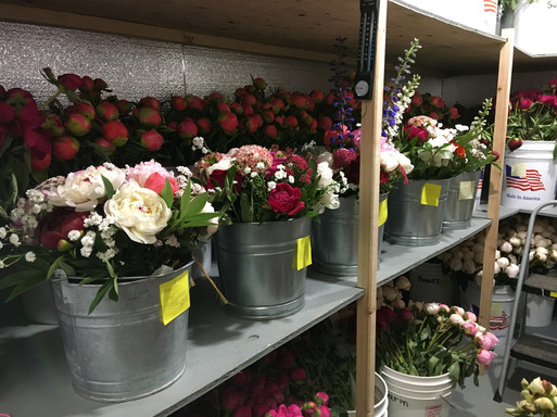 Farm Share Bouquets in the Chiller, 2020