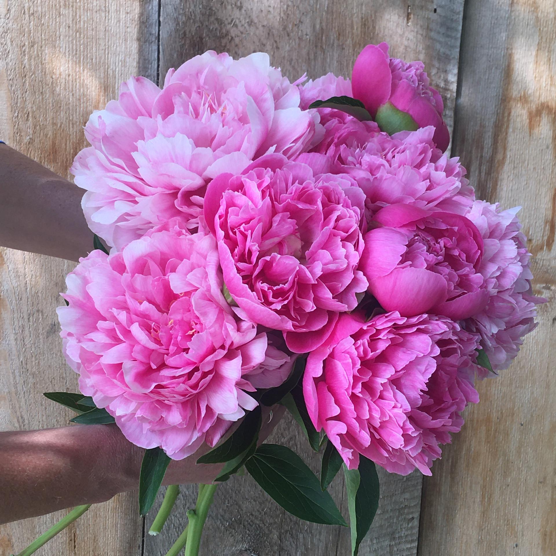 Joker Bouquet