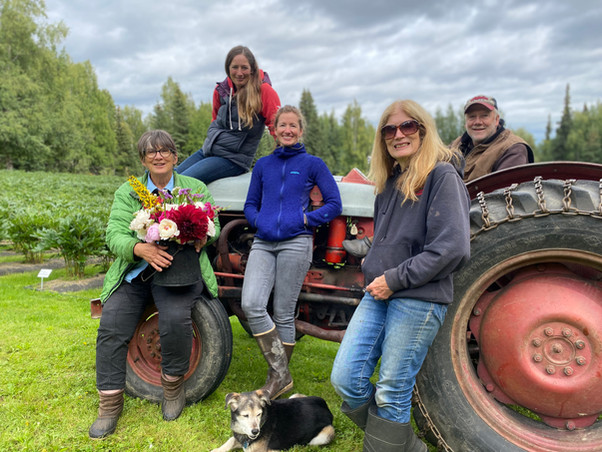 The Alaska Peony Flowers Family 2020