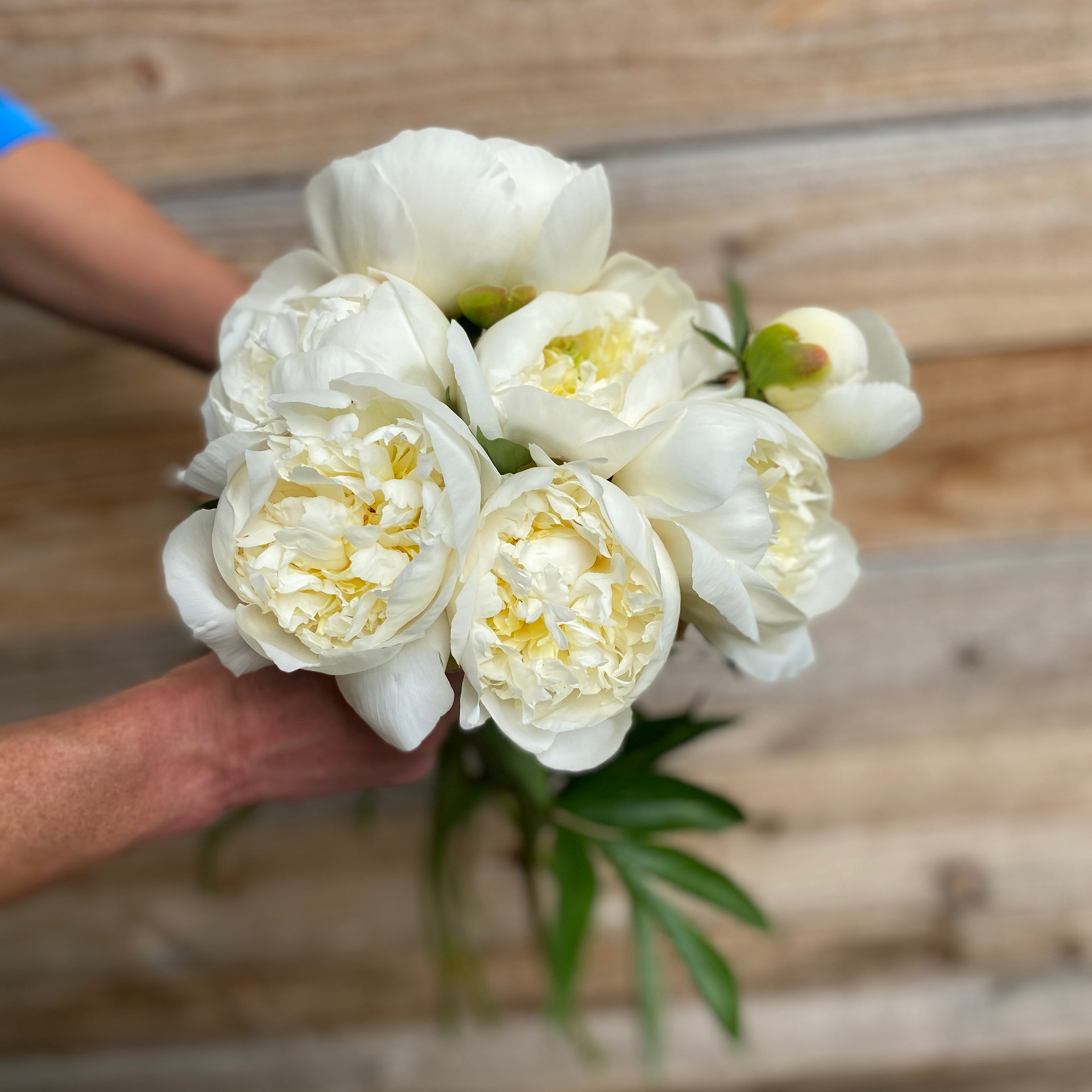 Early White Bouquet