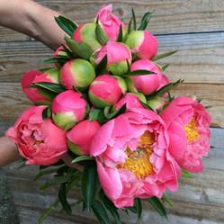 Coral Charm Bouquet