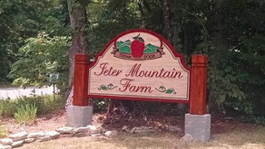 Jeter Mountain Farm: Hidden Gem for your Next Event