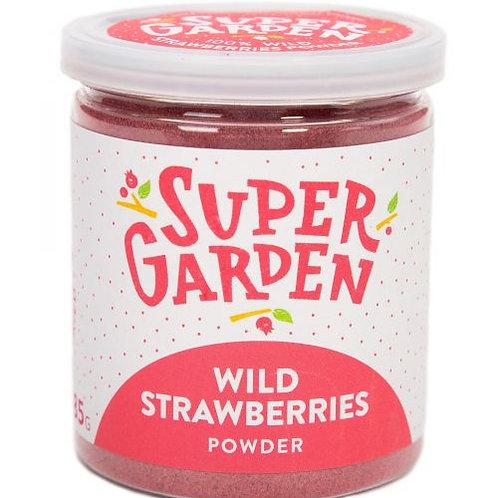 Freeze Dried Wild Strawberry Powder