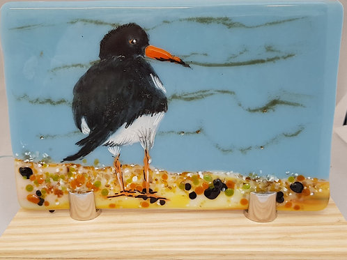 Oyster Catcher Glass Panel