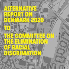 Alternative Report on Denmark 2020