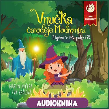 Audiokniha 3.jpg