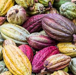 REAL BEAUTY ♥️ ⠀⠀⠀⠀⠀⠀⠀⠀⠀_#Anacata #MunchBetter #SuperfoodChocolateBarks #DarkChocolate #SugarFree #V