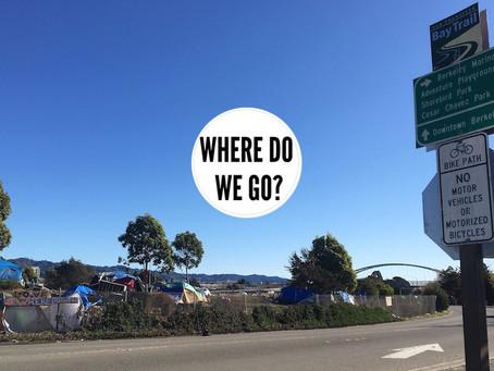 "Update from ""Where Do We Go?""  Andrea Henson"