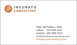 Venture Capital Firm - cards