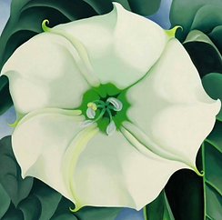 Jimson Weed/White Flower No. 1 by Georgia O'Keeffe