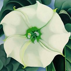 Jimson Weed/White Flower No. 1 by Georgia O'Keeffe