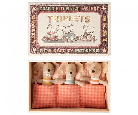 Les souris bébés triplés