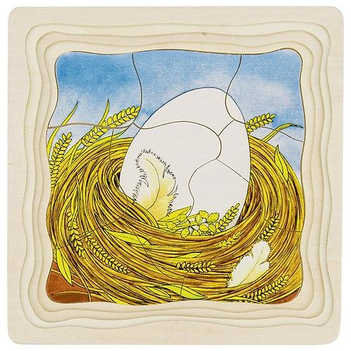 Puzzle à couche, cycle de la vie, la poule