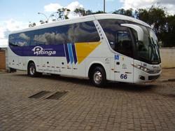 Ônibus 66
