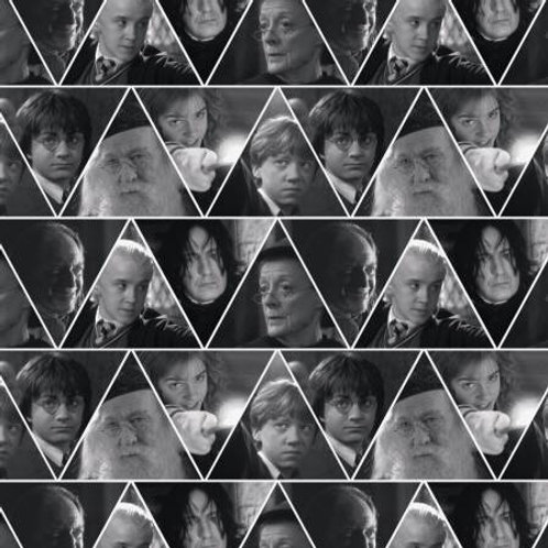 Harry Potter ~ Triangles
