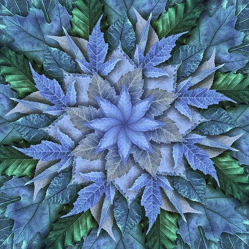 Dream Big Leaf -bluegrass