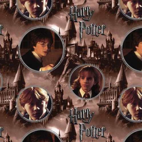 Harry Potter ~ Hogwarts & Characters