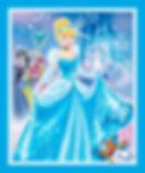 Cinderella Fabric