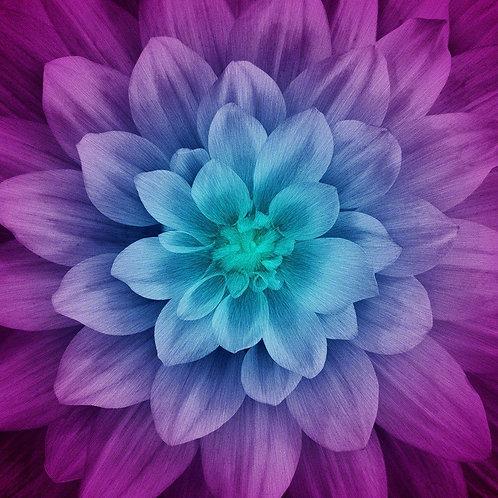 Hoffman Dream Big Aurora flower panel