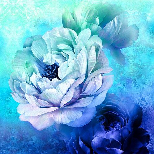Royal Beauty - Blue
