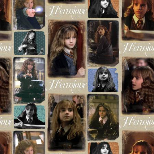 Harry Potter ~ Hermione