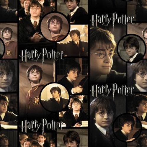 Harry Potter ~ Harry