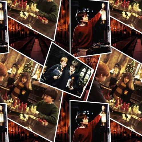 Harry Potter ~ Scenes