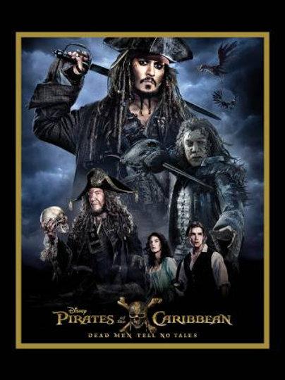 Disney Pirates of the Caribbean Panel