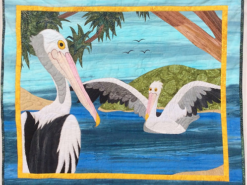 Pelicans - Colour by Numbers KIT