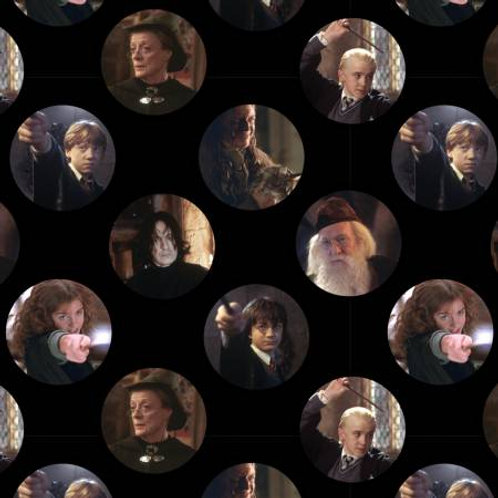 Harry Potter ~ Circles