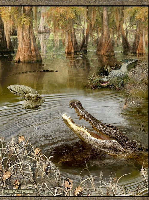 Alligator by Real Tree