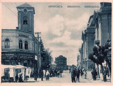 Kosztyó Gyula: Beregszász és vidékének vészterhes hónapjai. Összeomlás, proletárdiktatúra és az elcs