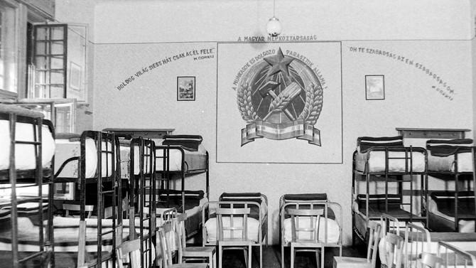 Tóth Eszter Zsófia: Egy kistarcsai internálás története