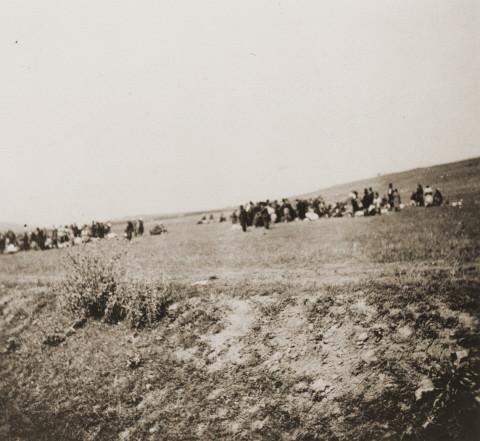 Német nyelvű könyvfejezet a kamenyec-podolszkiji deportálásról (1941–1944)
