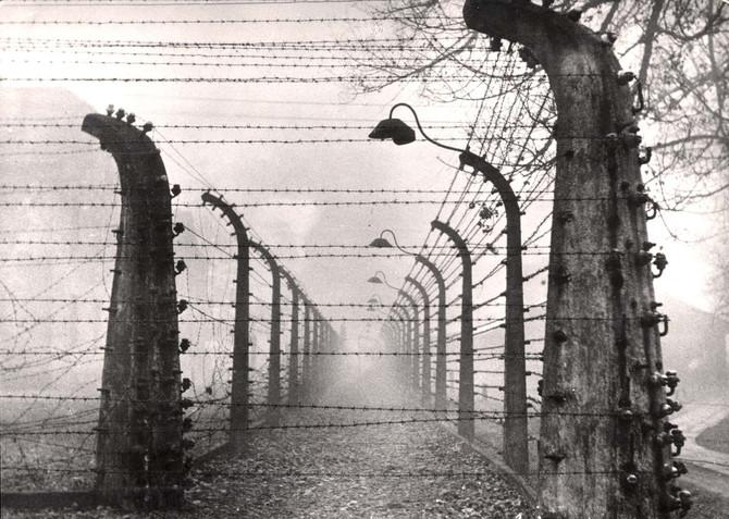 """Hét tonna haj - """"A népirtás világunk élő tapasztalata maradt"""""""