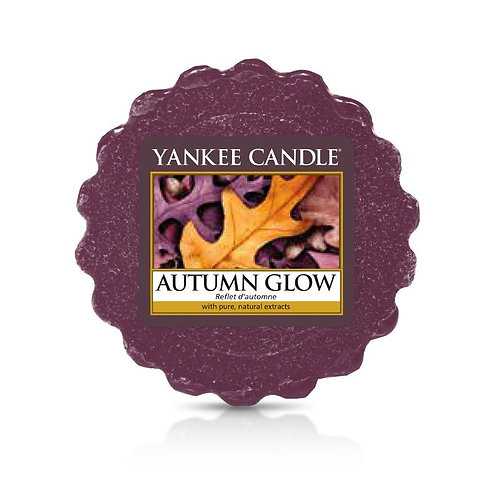 Yankee Candle Wax Melt Autumn Glow