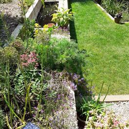A sloping garden