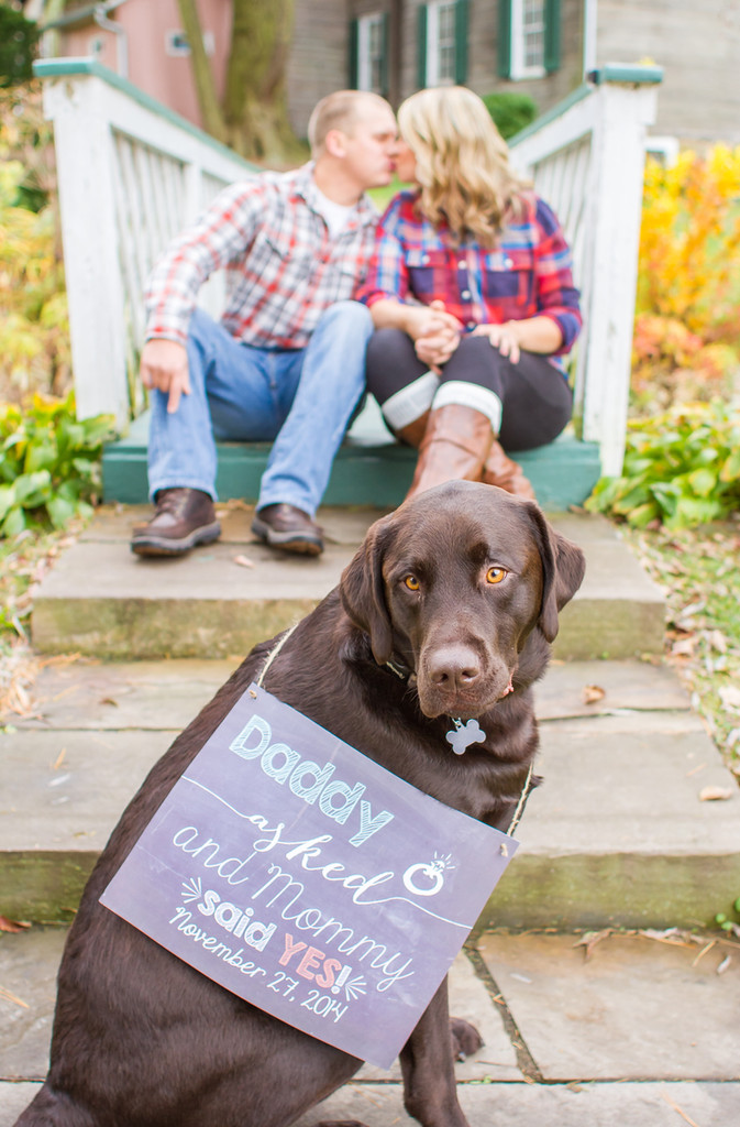 A Dog on the Blog | Incorporating your Fur Baby in your Engagement Session