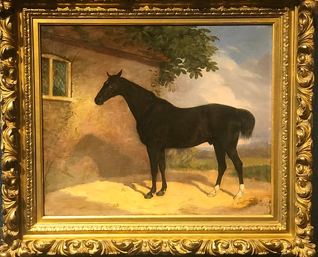 The Black Racehorse by George Stubbs
