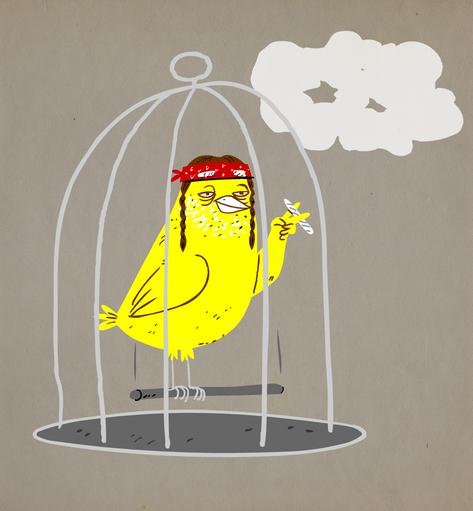 Willie_Bird_v01.png